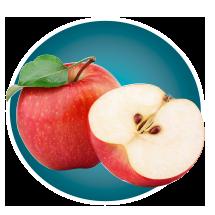 Lifescape Nutrition Program